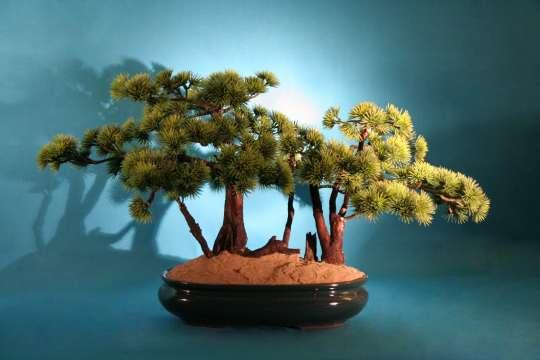 Umelý bonsai