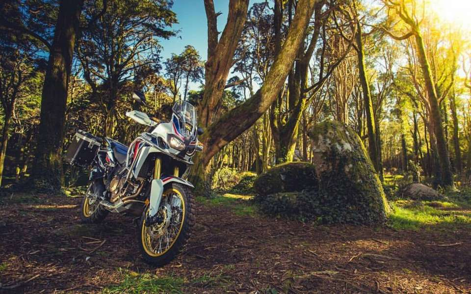 Jazda na motorke v lese