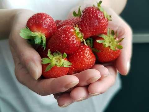červené-jahody