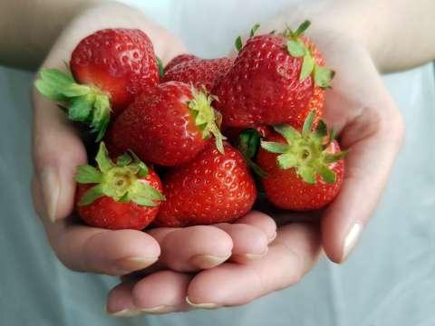 Jahody v dlani
